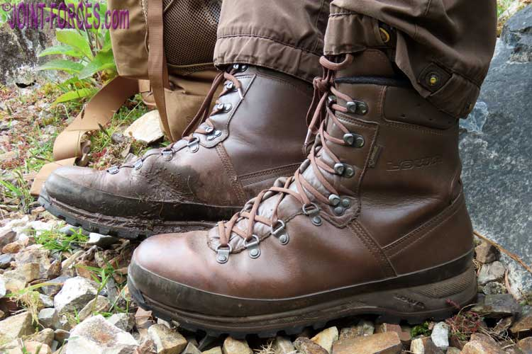 LOWA Mountain Boots GTX Brown | Joint